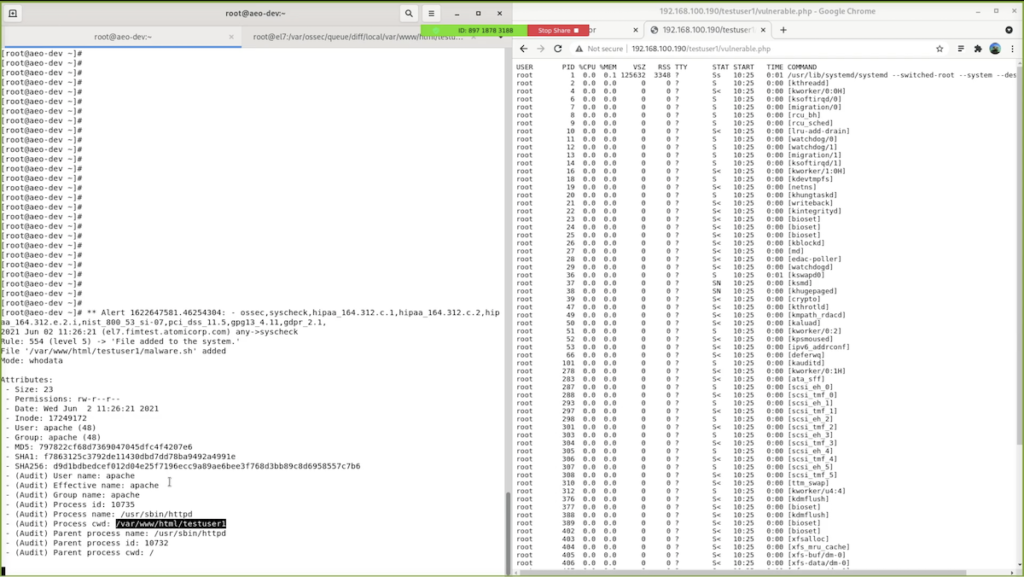 File Integrity Monitoring (FIM) - Figure 1